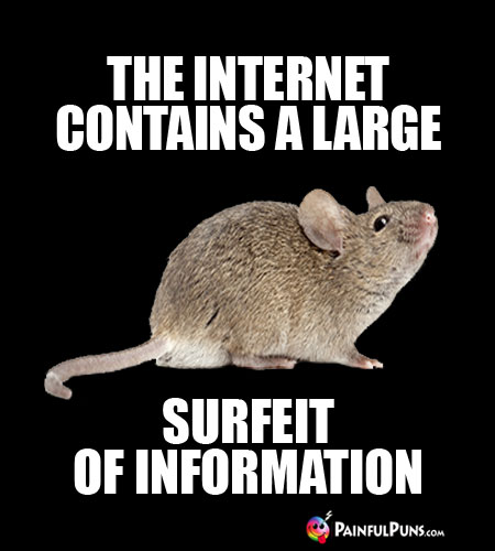 The Internet Contains a Large Surfeit of Information