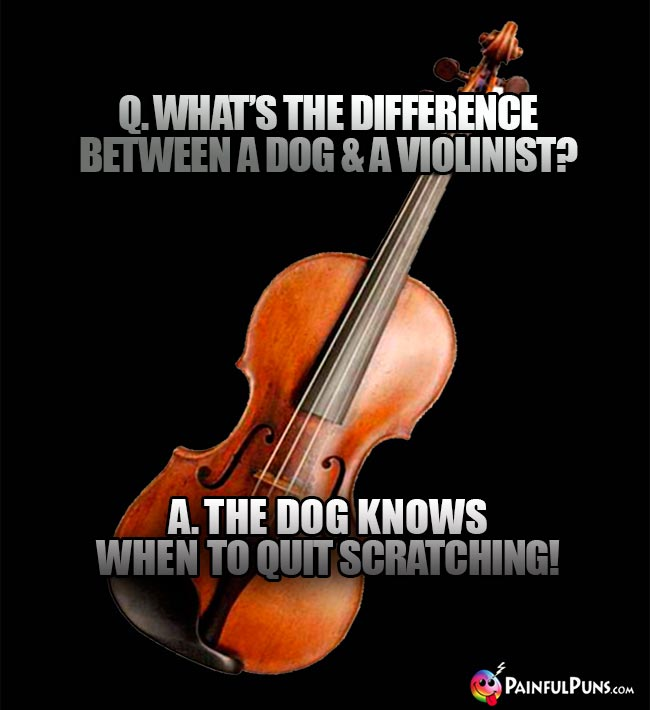 Q. What's the difference between a dog & a violinist? A. The dog knows when to quit scratching!