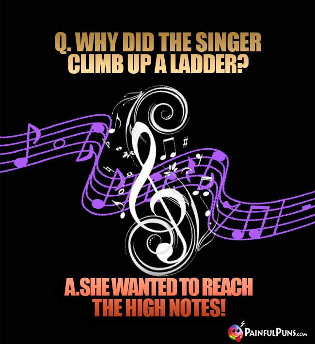 Q. Why did the singer climb up a ladder? A. She wanted to reach teh high notes!