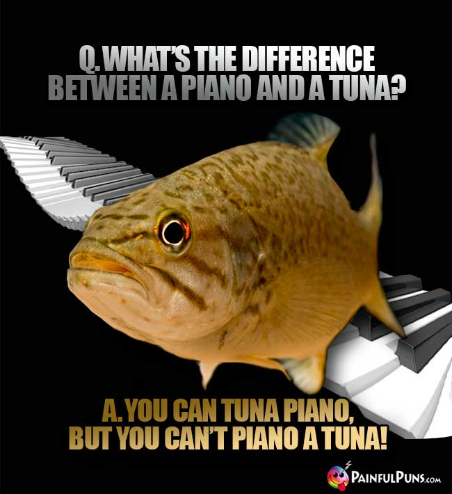 Q. What's the difference between a piano and a tuna? A. You can tuna piano, but you can't piano a tuna!