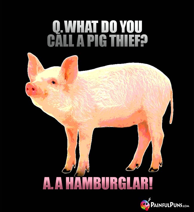 Q. What do you call a pig thief? A. A Hamburglar!