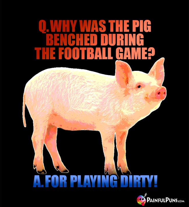Q. Why was the pig benched during the football game? A. For playing dirty!