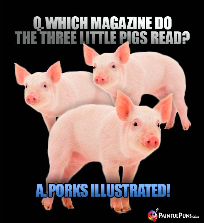 Q. Which magazine do the three little pigs read? A. Porks Illustrated!