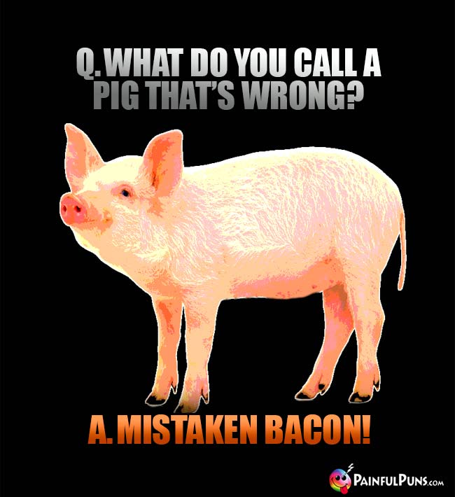 Q. What do you call a pig that's wrong? A. Mistaken Bacon!