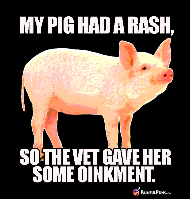 My Pig Had a Rash, So the Vet Gave Her Some Oinkment.