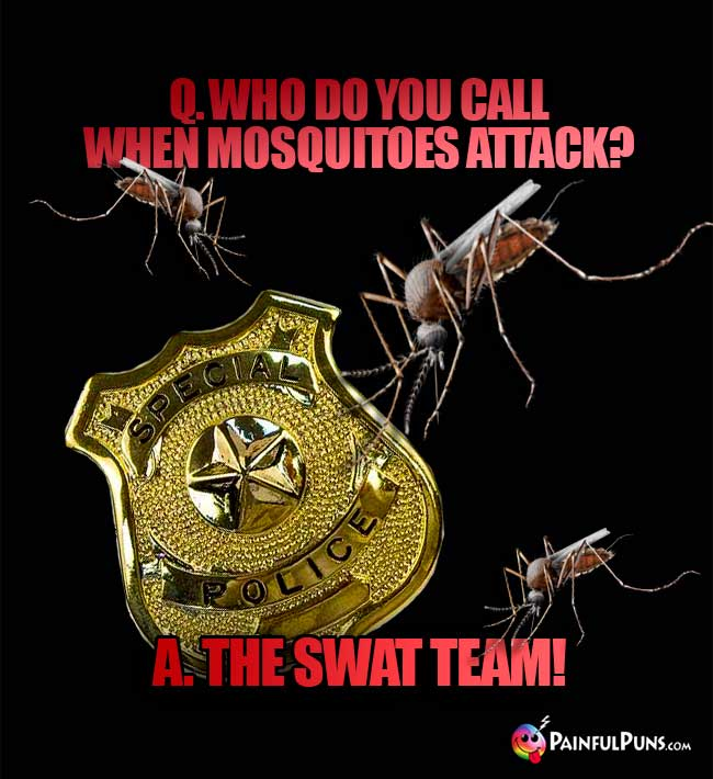 Who do you call when mosquitoes attack? A. The SWAT team!