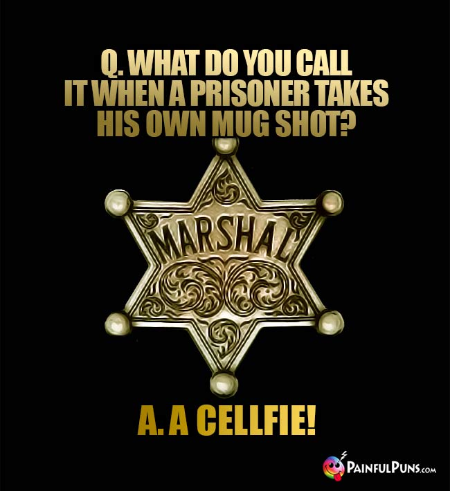 Q. What do you call if when a prisoner takes his own mug shot? A. A cellfie!