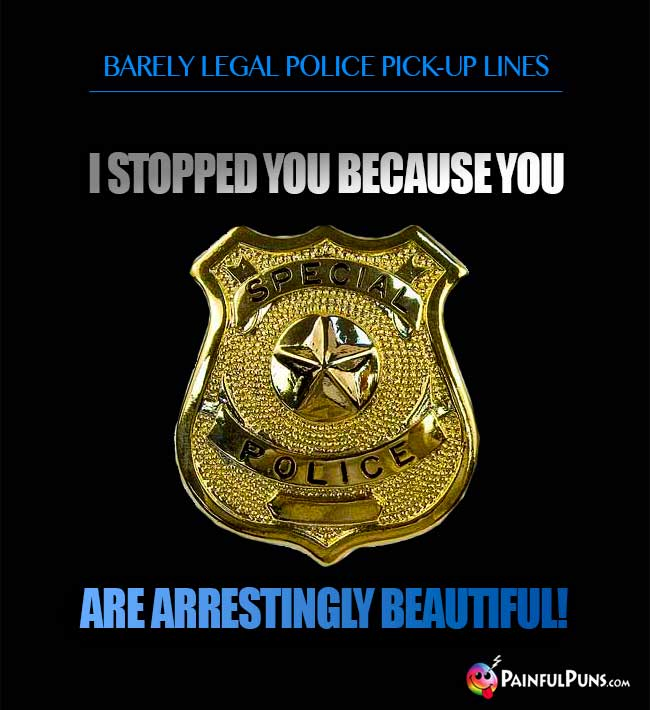 Police Pick Up Lines Undercover Come Ons 2 Painfulpuns Com