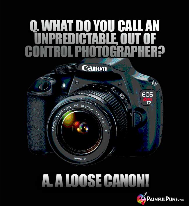 Q. What do you call an unpredictable out of control photographer? A. A Loose Canon!