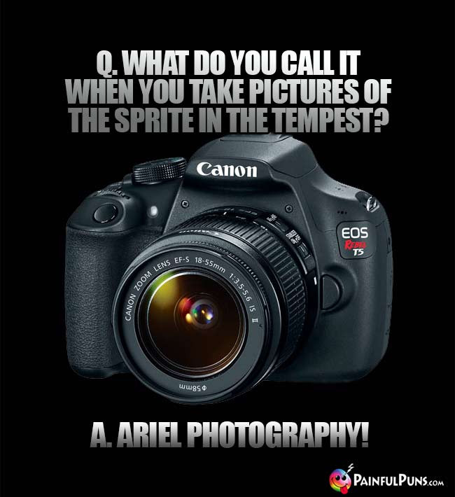 Q. What do you call it when you take pictures of the sprite in the tempest? A. Ariel Photography!