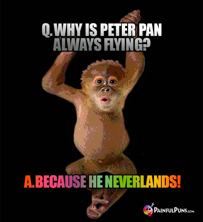 Q. Why is Peter Pan always flying? A. Because He Neverlands!