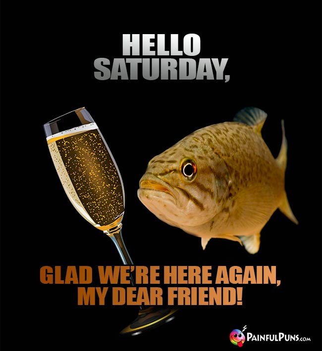 Toasting Fish Says: Hello Saturday, Glad we're here again, my dear friend!