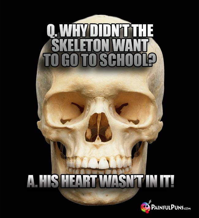 Q. Why didn't the skeleton want to go to school? A. His heart wasn't in it!