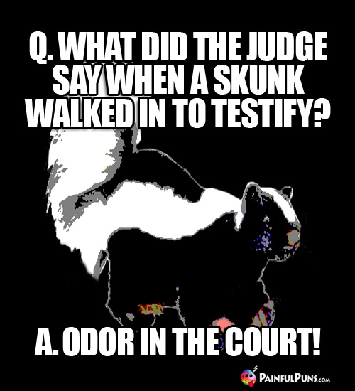 Q. What did the judge say when a skunk walked in to testify? A. Odor in the Court!
