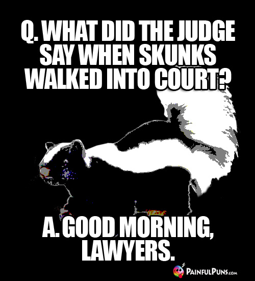 Stinking Funny Pun: Q. What did the judge say when skunks walked into court? A. Good morning, lawyers.