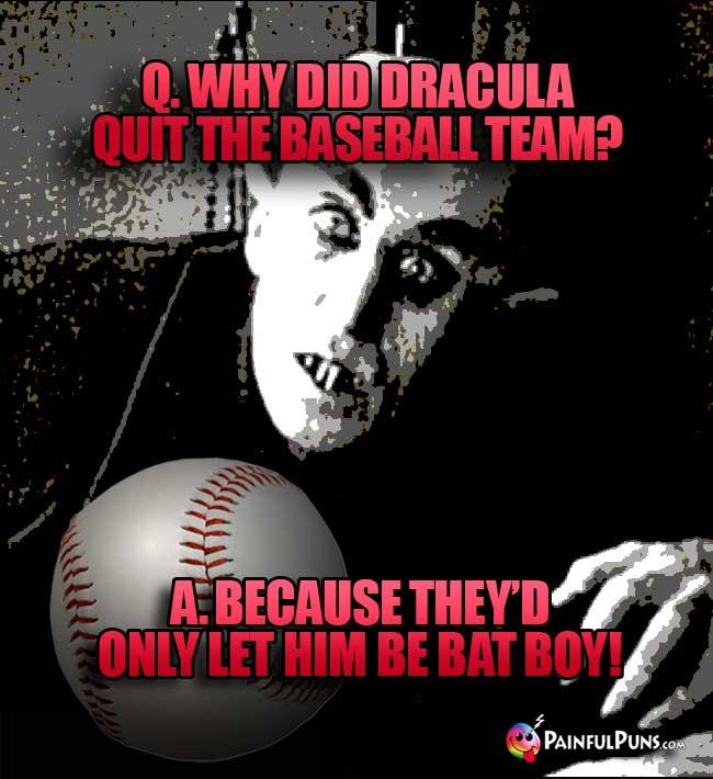 Baseball Jokes, Ballpark Humor, Bullpen Puns 2   PainfulPuns com