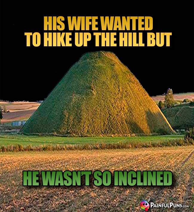 His wife wanted to hike up the hill but he wasn't so inclined.