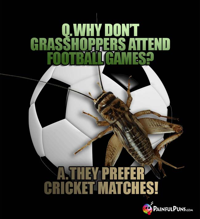 Q. Why don't grasshoppers attend football games? A. They prefer cricket matches!