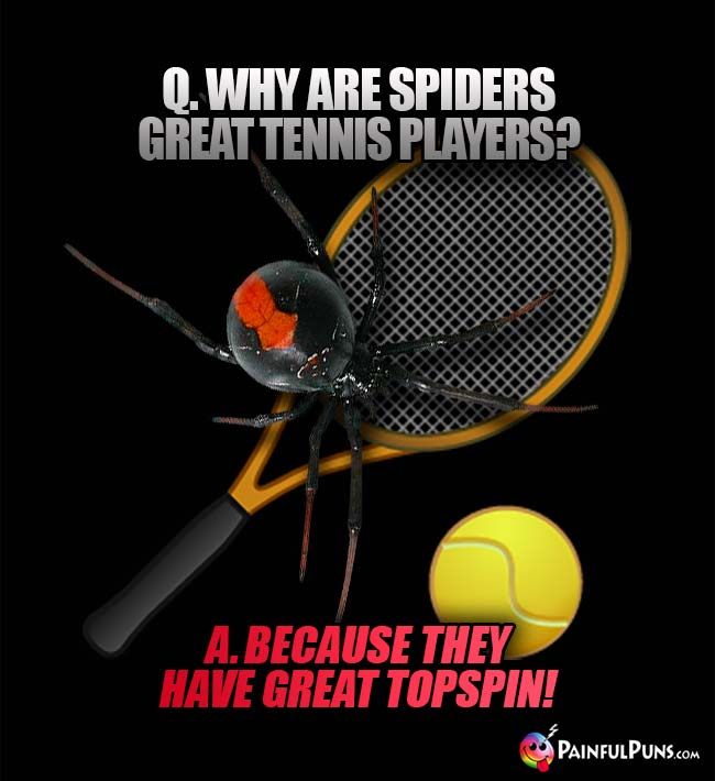 Q. Why are spiders great tennis players? A. Because they have great topspin!