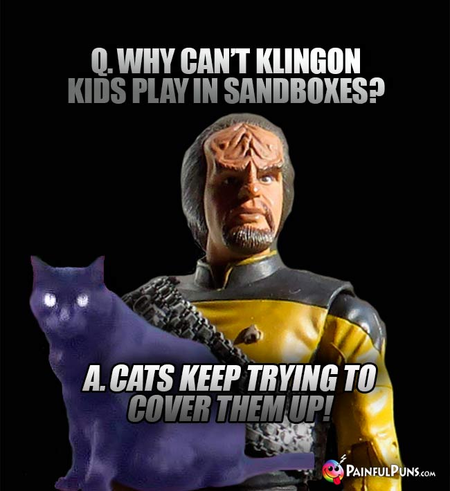 Worf Asks: Why can't Klingon kids play in sandboxes? A. Cats keep trying to cover them up!