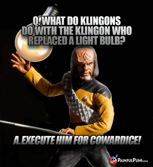 Q. What do Klingons do with the Klingon who replaced a light bulb? A. Execute him for cowardice!