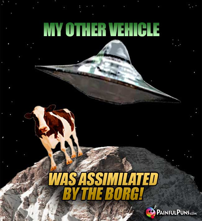 Cow Says: My other vehicle was assimilated by the Borg!