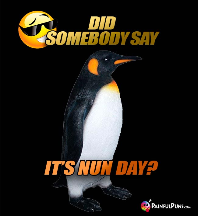 Penguin Asks: Did somebody say it's Nun Day?