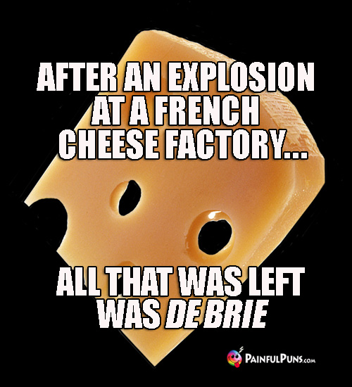After an exposion at a French cheese factory, all that was left was De Brie