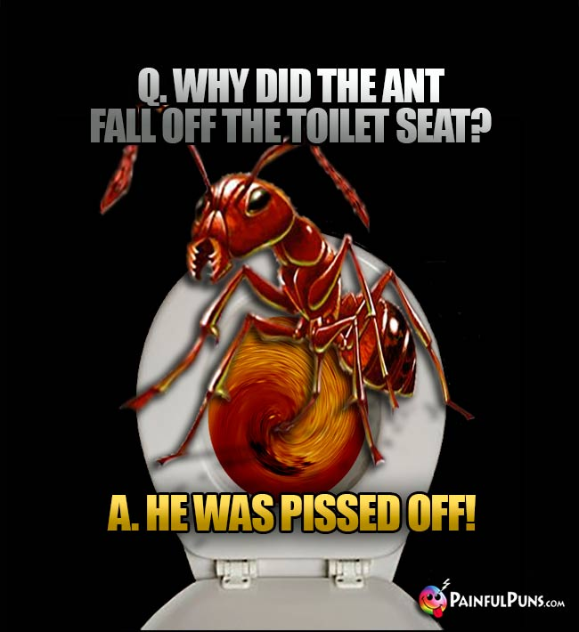 Q. Why did the ant fall off the toilet seat? A. He was pissed off!