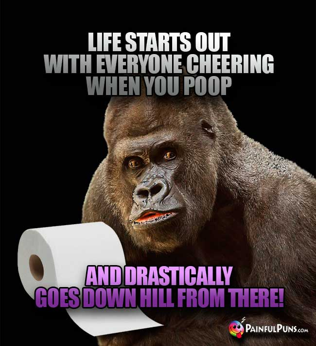 Gorilla Says: Life starts out with everyone cheering when you poop, and drastically goes down hill from there!