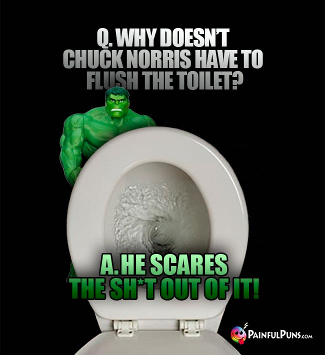 Q. Why doesn't Chuck Norris have to flush the toilet? A. He scares the sh*t out of it!