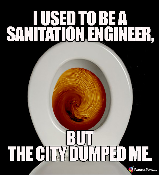 Sh*tty Pun: I used to be a sanitation engineer, but the city dumped me.