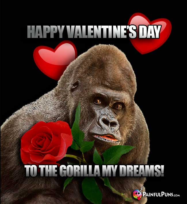 Happy Valentine's Day to the gorilla my dreams!