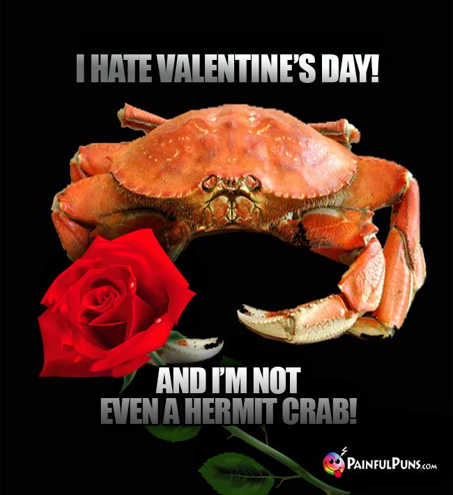 I hate Valentine's Day! And I'm not even a hermit crab!