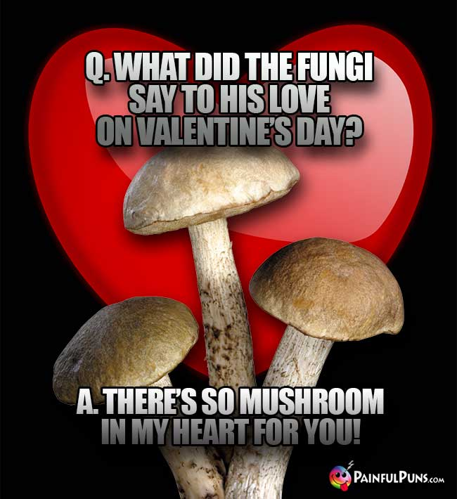 Q. What did the fungi say to his love on Valentine's Day? A. There's o mushroom in my heart for you!