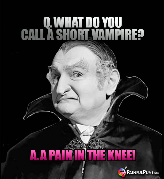 Q. What do you call a short vampire? A. A pain in the knee!