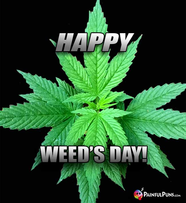 Happy Cannabis Says: Happy Weed's Day!