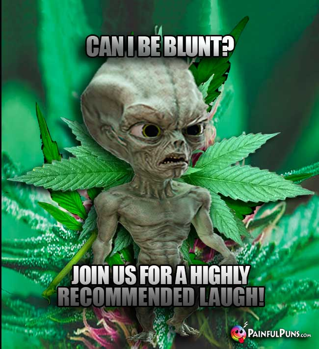 Alien Abduction: Can I be blunt? Join us for a hghly recommended laugh!