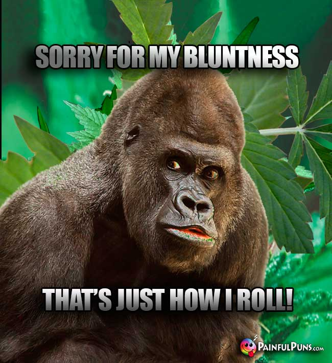 Big Ape Says: Sorry for my bluntness, that's just how I roll!