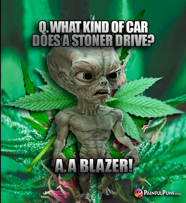 Q. What kind of car does a stoner drive? A. A Blazer!