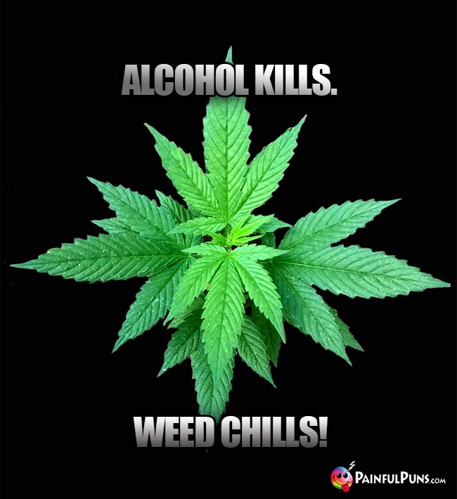 Alcohol Kills. Weed Chills!