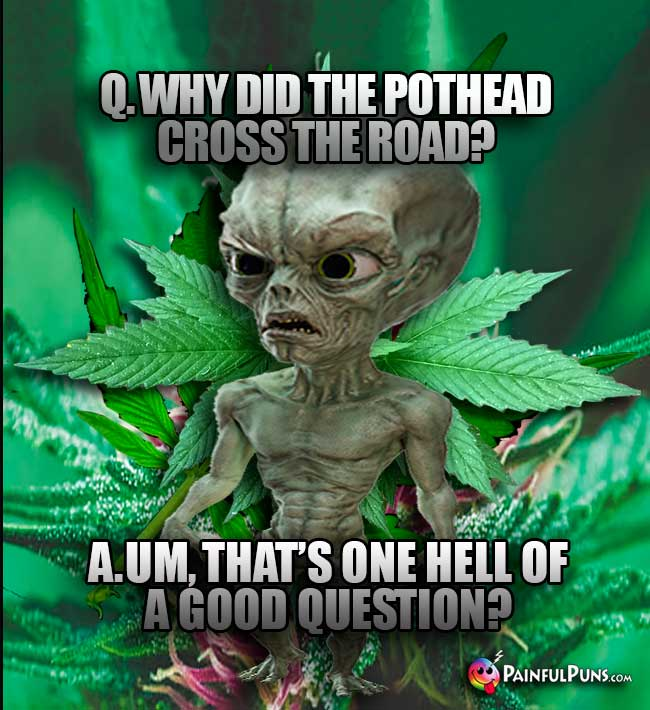 Q. Why did the pothead cross the road? A. Um, that's one hell of a good question?