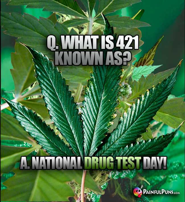 Q. What is 421 known as? A. National Drug Test Day!