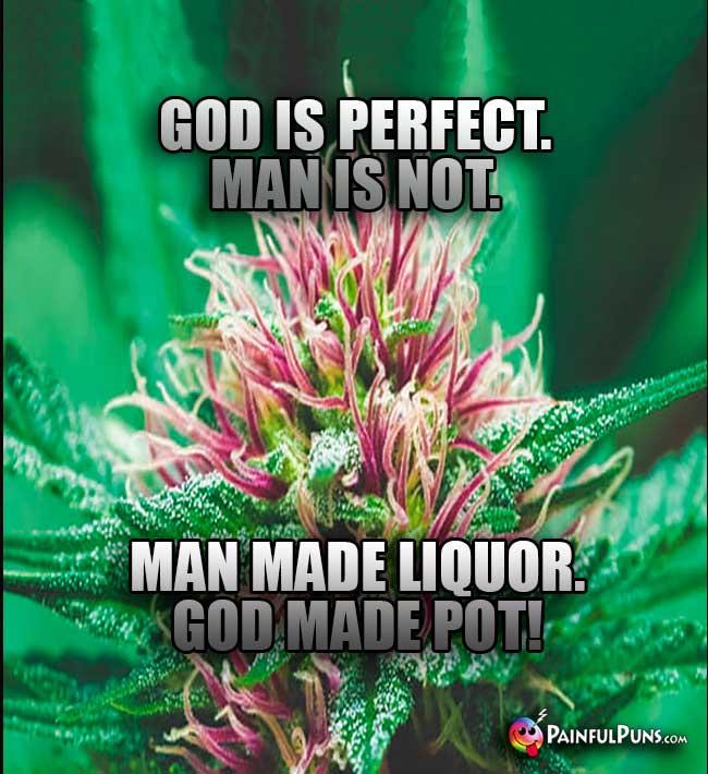 pot poetry  marijuana mantras  weed slogans