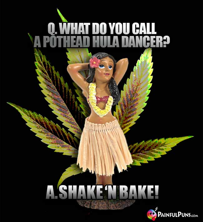 Q. What do you call a pothead hula dancer? A. Shake 'N Bake!