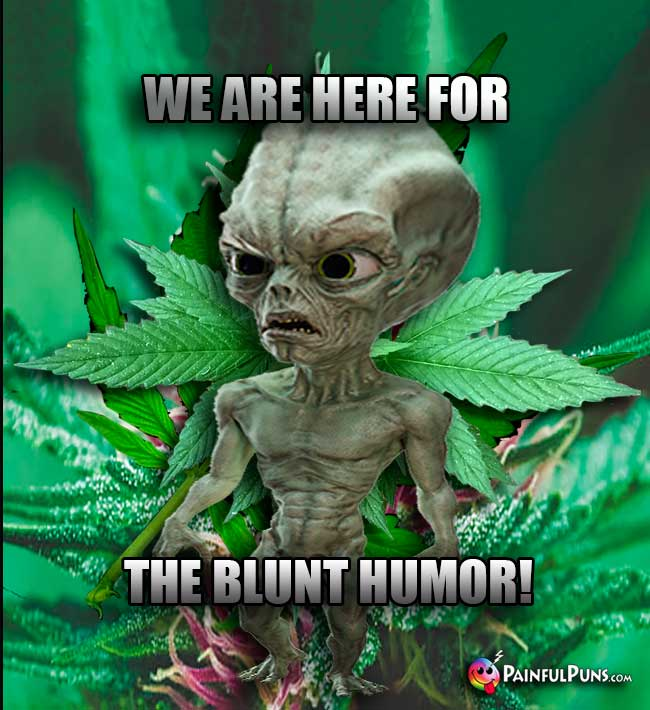 Green Alien Says: We are here for the blunt humor!
