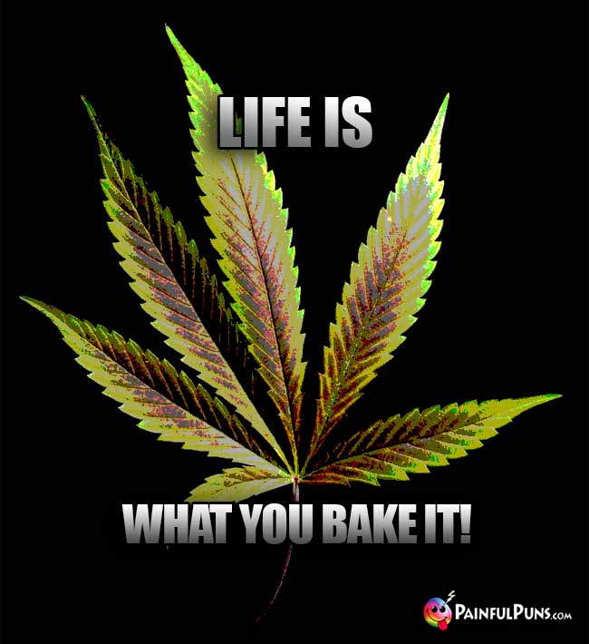 Weed Wisdom: Life is What You Bake It!