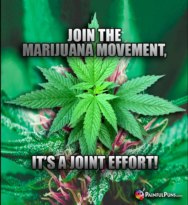 Join the marijuana movement, it's a joint effort!