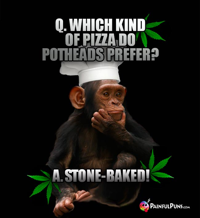 Chimp Chef Asks: Which kind of pizza do potheads prefer? A. Stone-Baked!