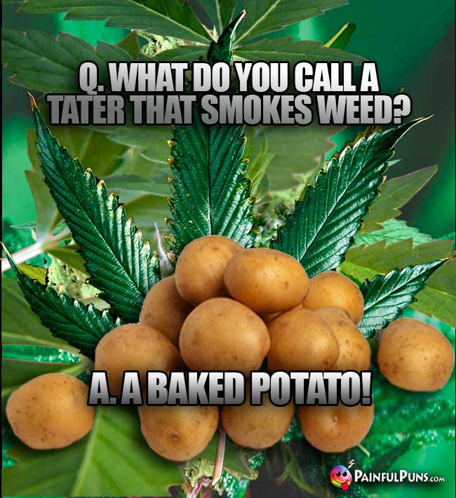 Q. What do you call a tater that smokes weed? A. A Baked Potato!